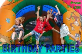 Birthday Party website pic